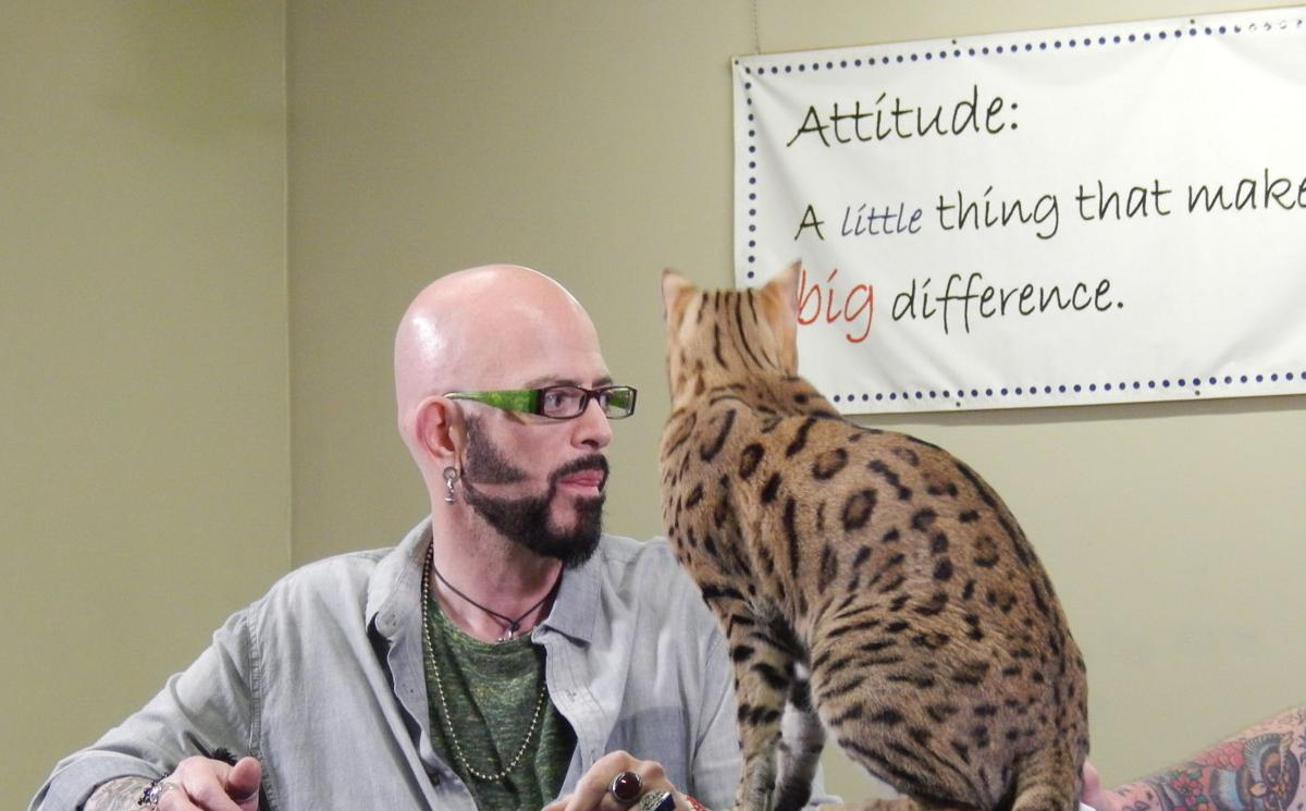 Feline whisperer jackson galaxy knows the secrets to for Jackson galaxy cat mojo