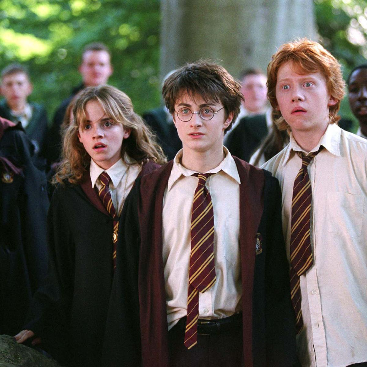 Should Harry And Hermione Have Ended Up Together In Harry