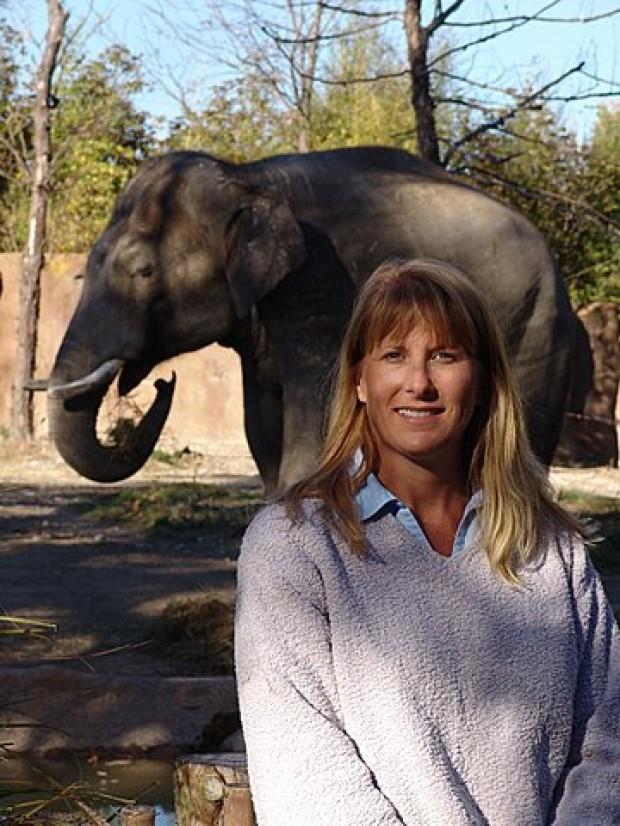 Zookeeper Curator Salary