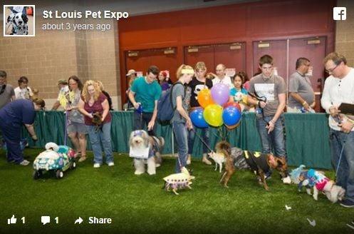 Pet Expo Facebook post