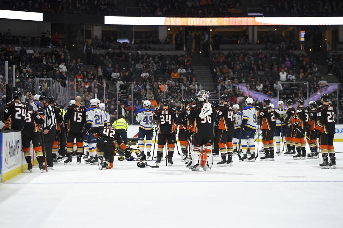 Blues Ducks Hockey