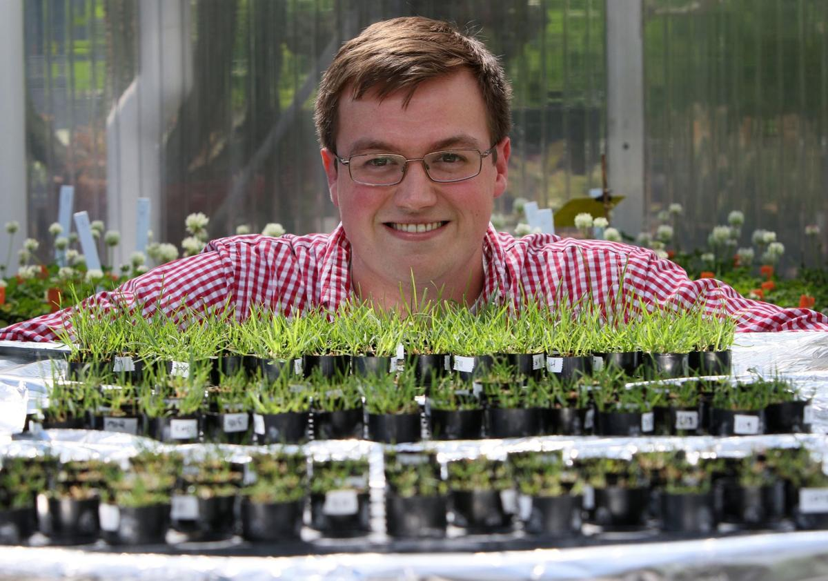 Wash U. studying salt tolerance in plants
