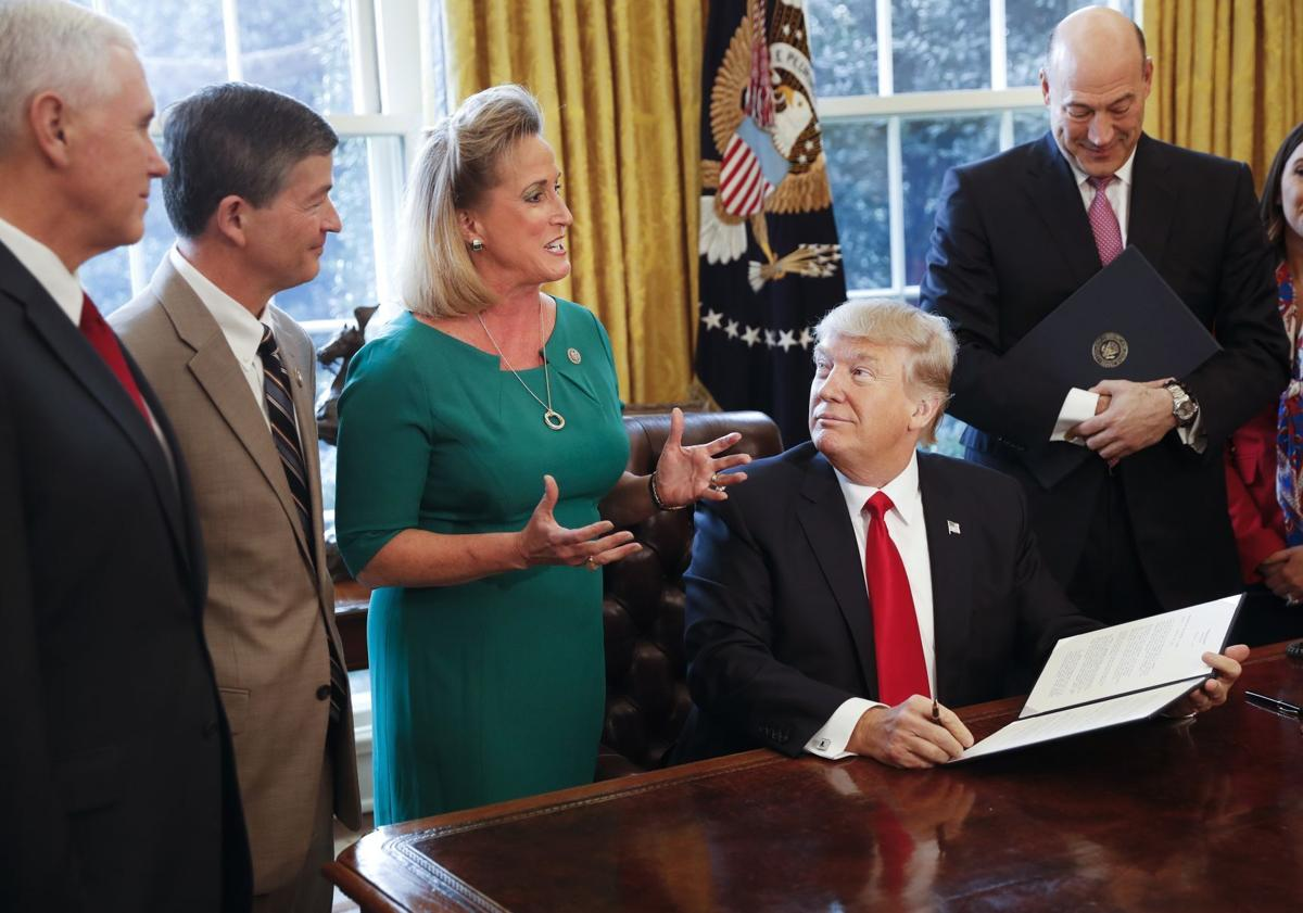 Trump and Ann Wagner