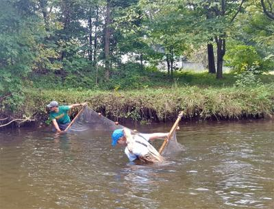 Researchers studying freshwater environments in the Meramec River watershed