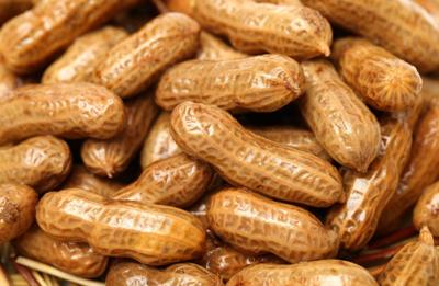 Recipe of the Day: Boiled Peanuts