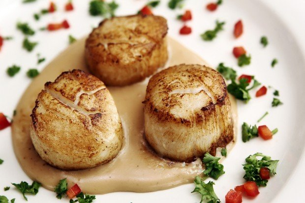 Special Request: Sea Scallops from Surf & Sirloin