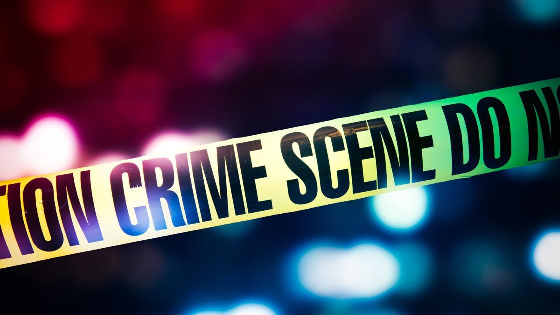 Frau erstochen, SWAT-team genannt folgenden inländischen Streit