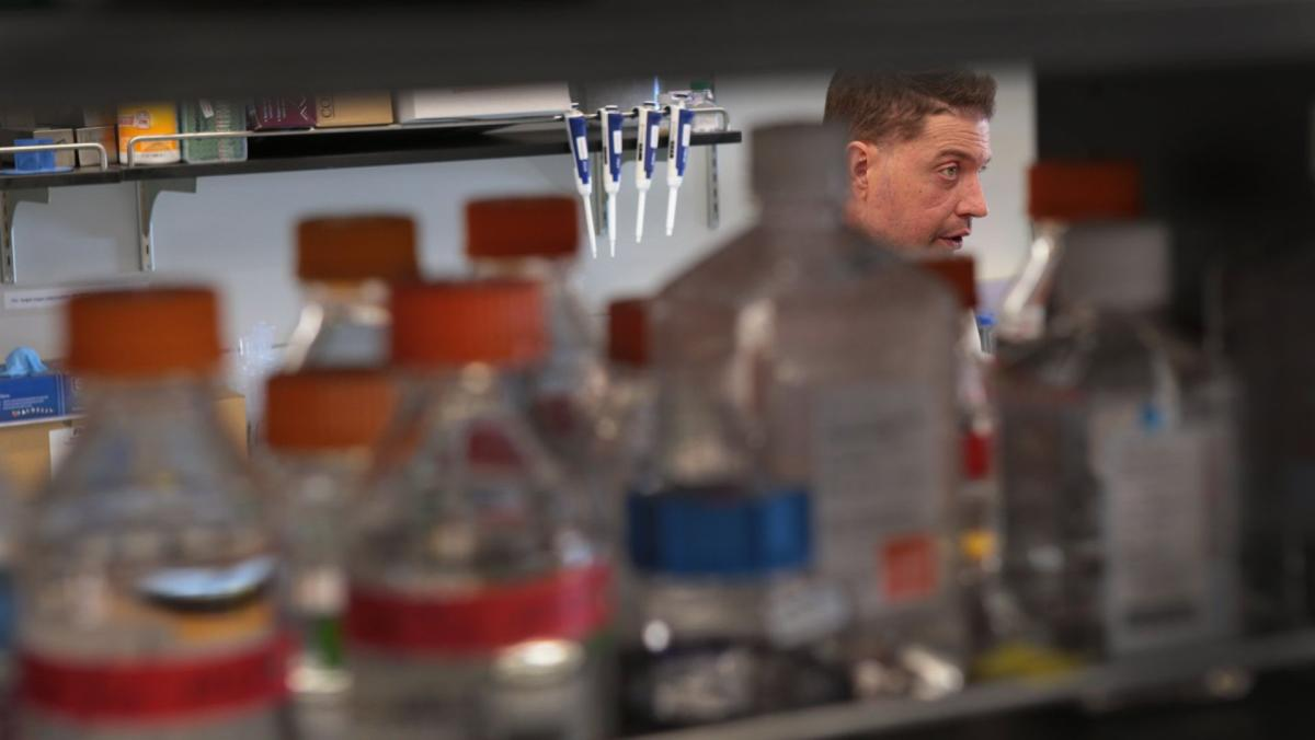 Doctor in remission from leukemia through genome mapping