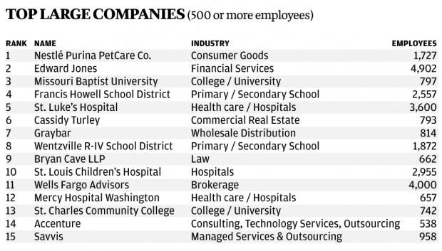 Top Large Companies