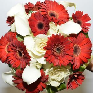 005_Walter Knoll Florist