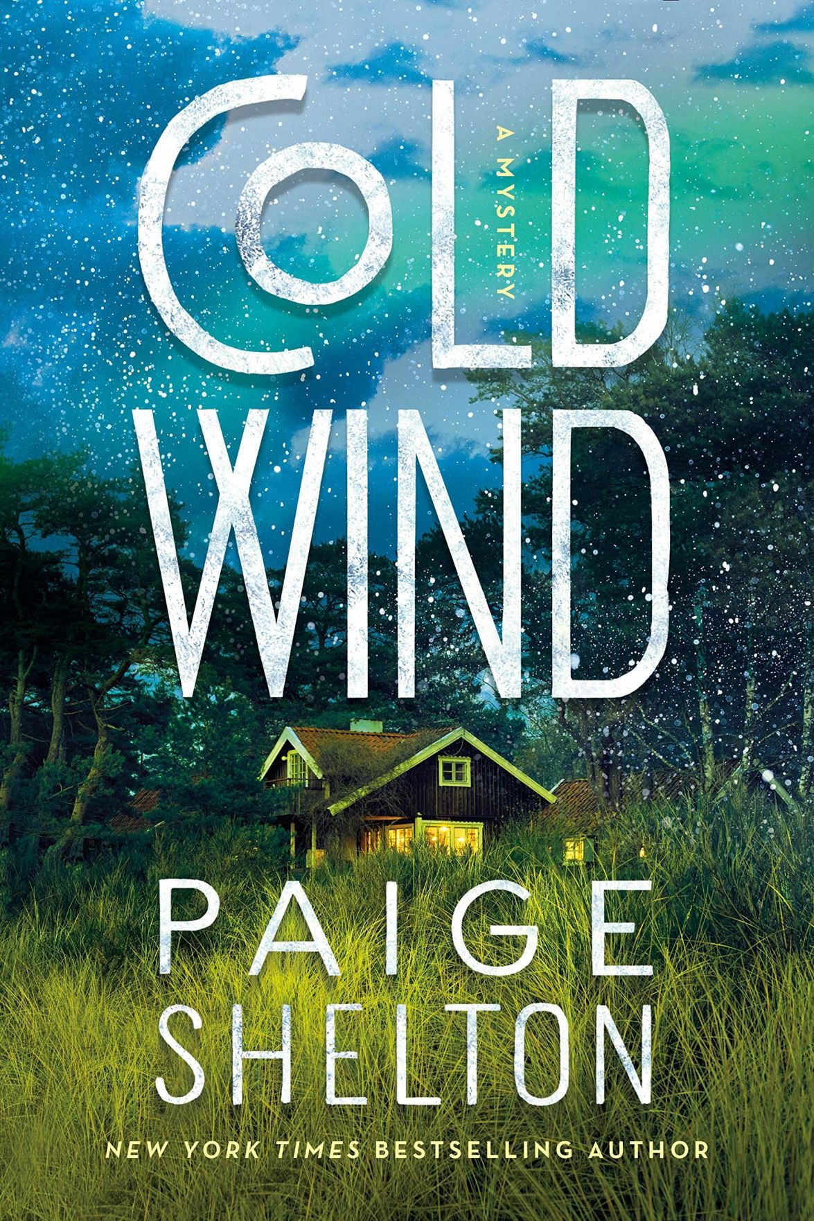 'Cold Wind' by Paige Shelton