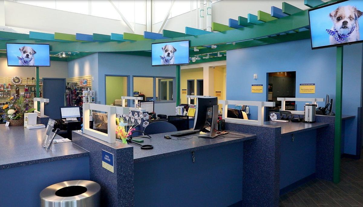 Humane Society Of Missouri Expands With New Maryland Heights Facility Metro Stltoday Com