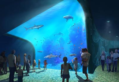 PGAV rendering of Union Station aquarium