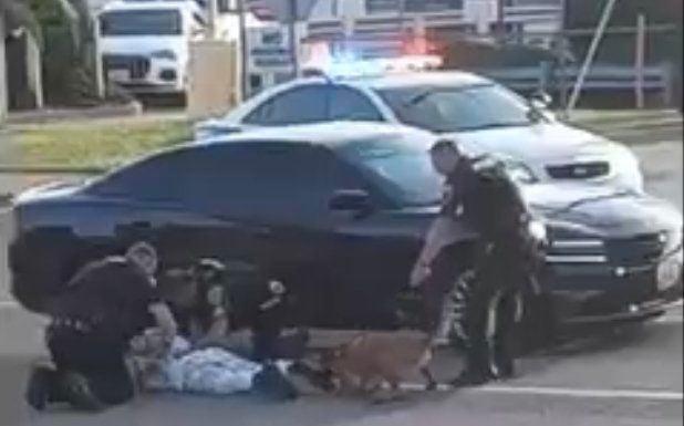 Screenshot of Woodson Terrace police dog