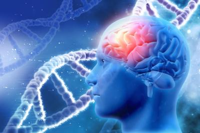 brain and DNA strands