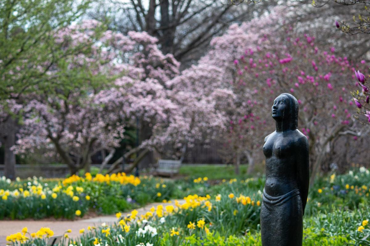 Garden Tour for Amy Bertrand