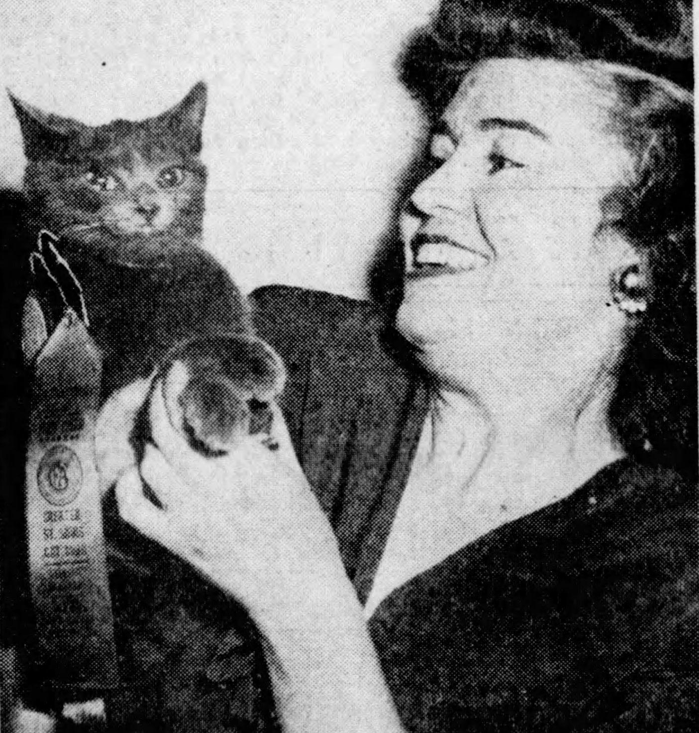 Stray Cat Wins Cat Show Award in 1947