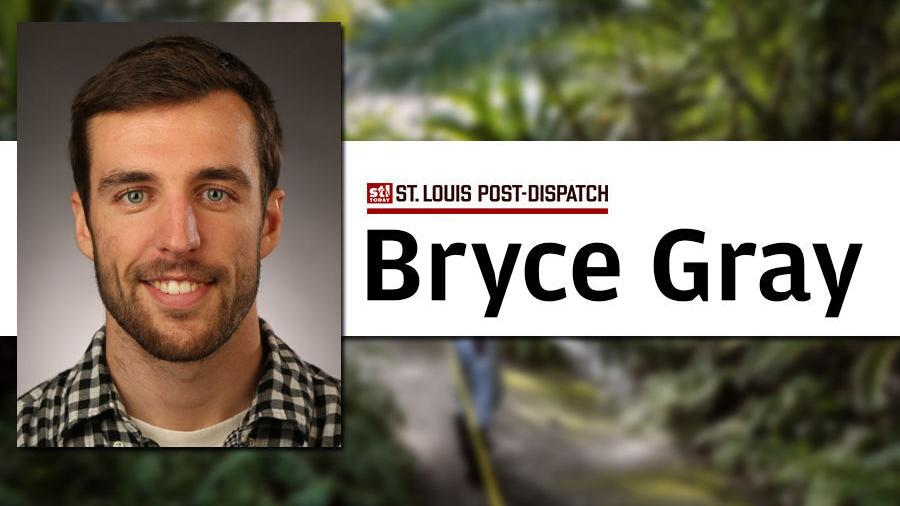 Bryce Gray's most memorable stories of 2020: Bat poop, 'orphaned' plants and animals, buses