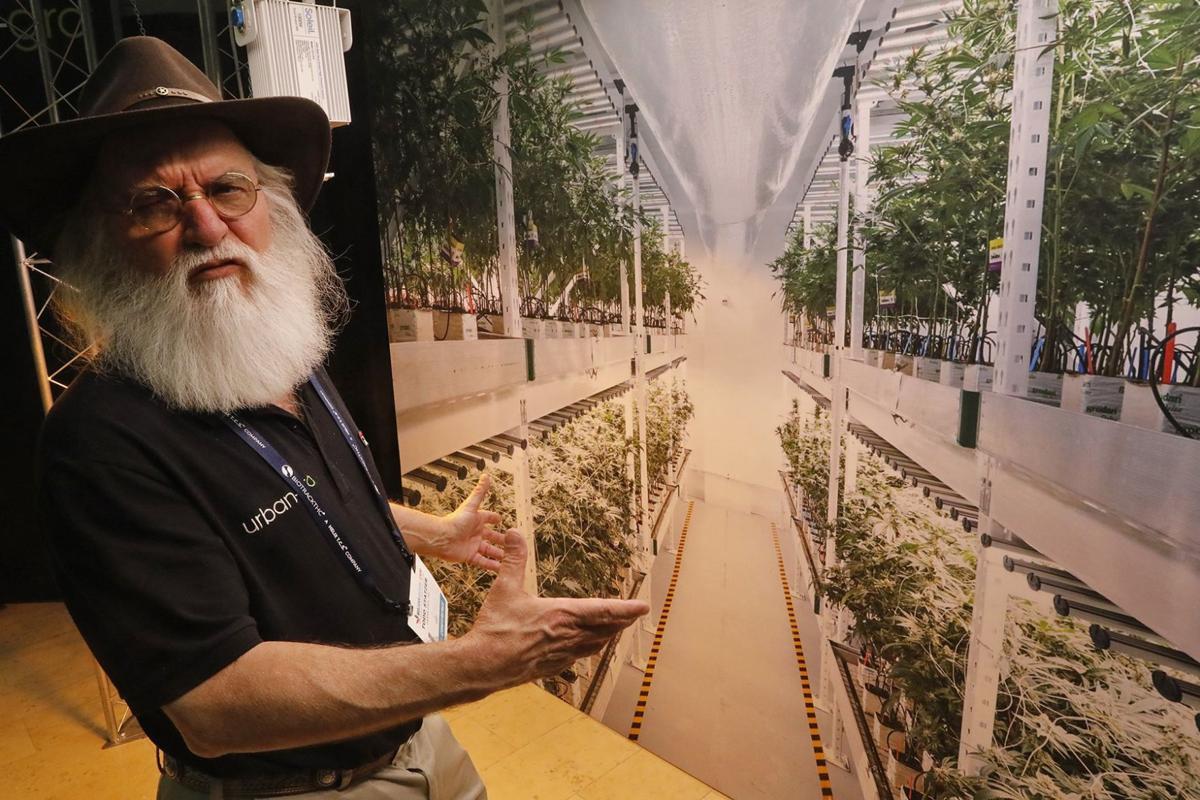 Future Marijuana industry draws potential growers