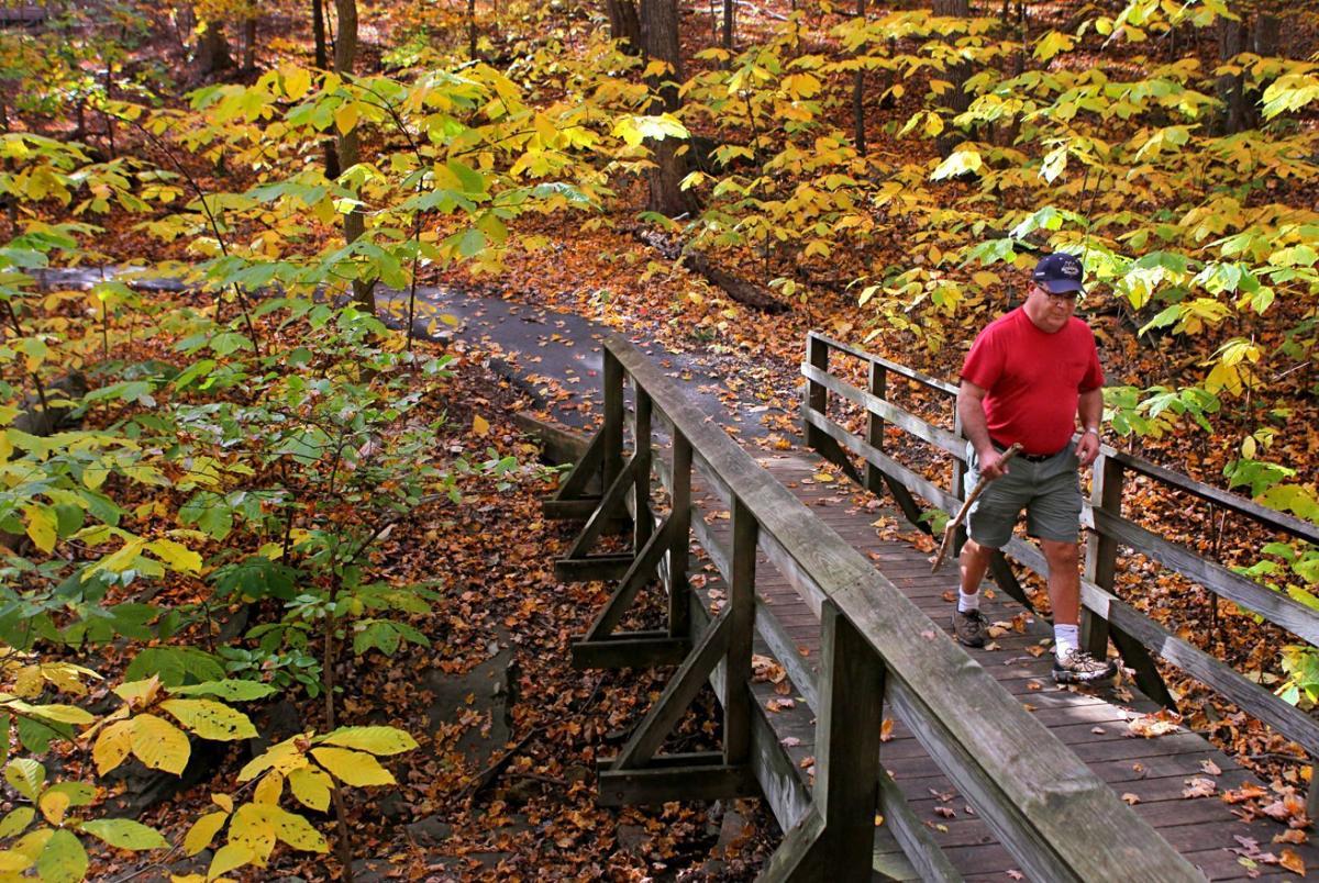 Walk through the fall colors