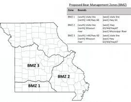 Bear Management Zones