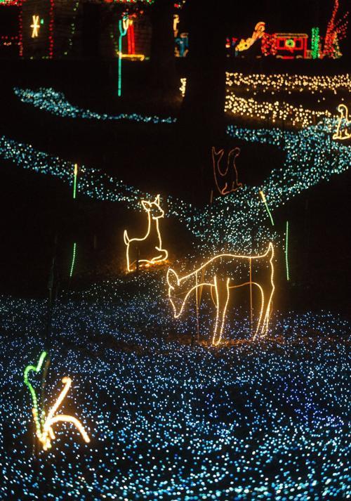 Tilles Park Christmas Lights.Winter Wonderland In Tilles Park Multimedia Stltoday Com
