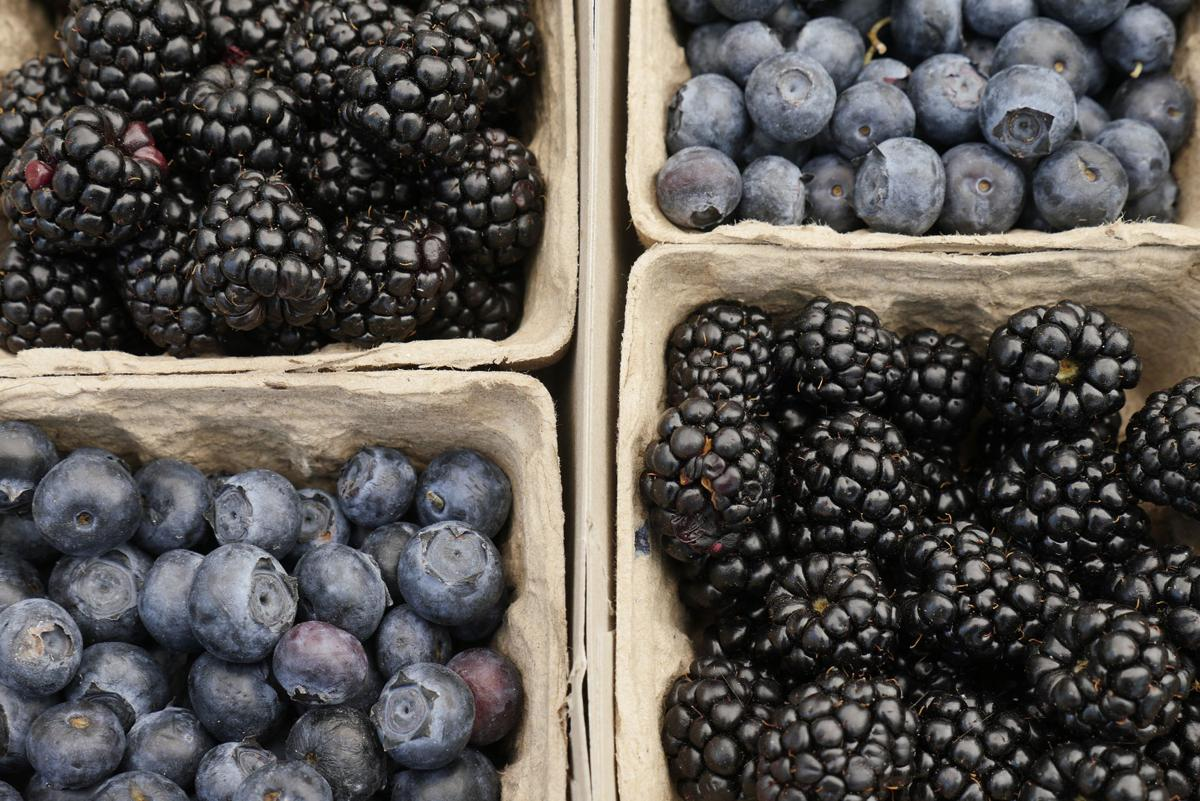 4 foods that fuel your brain
