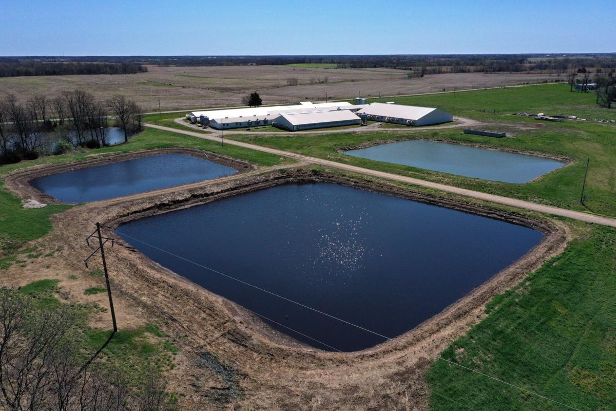 Waste lagoon breaches at Missouri hog farms