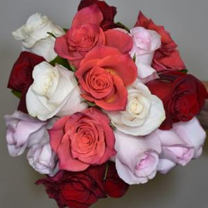 003_Walter Knoll Florist
