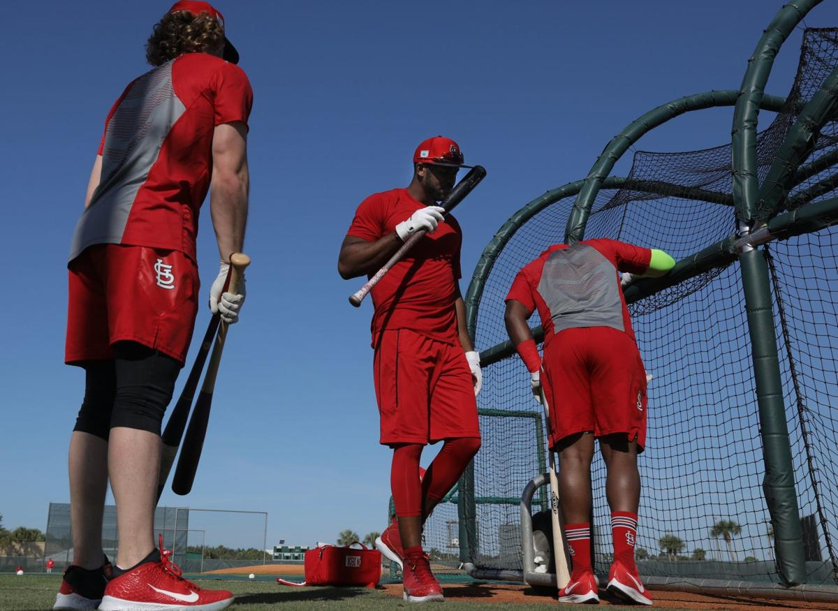 Photos: 2019 Cardinals Spring Training continues