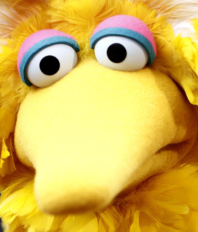 Big Bird SNL
