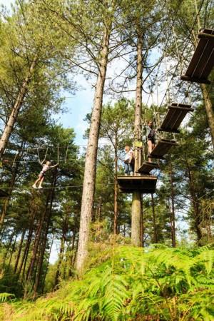 Critics take hacks at treetop adventure course