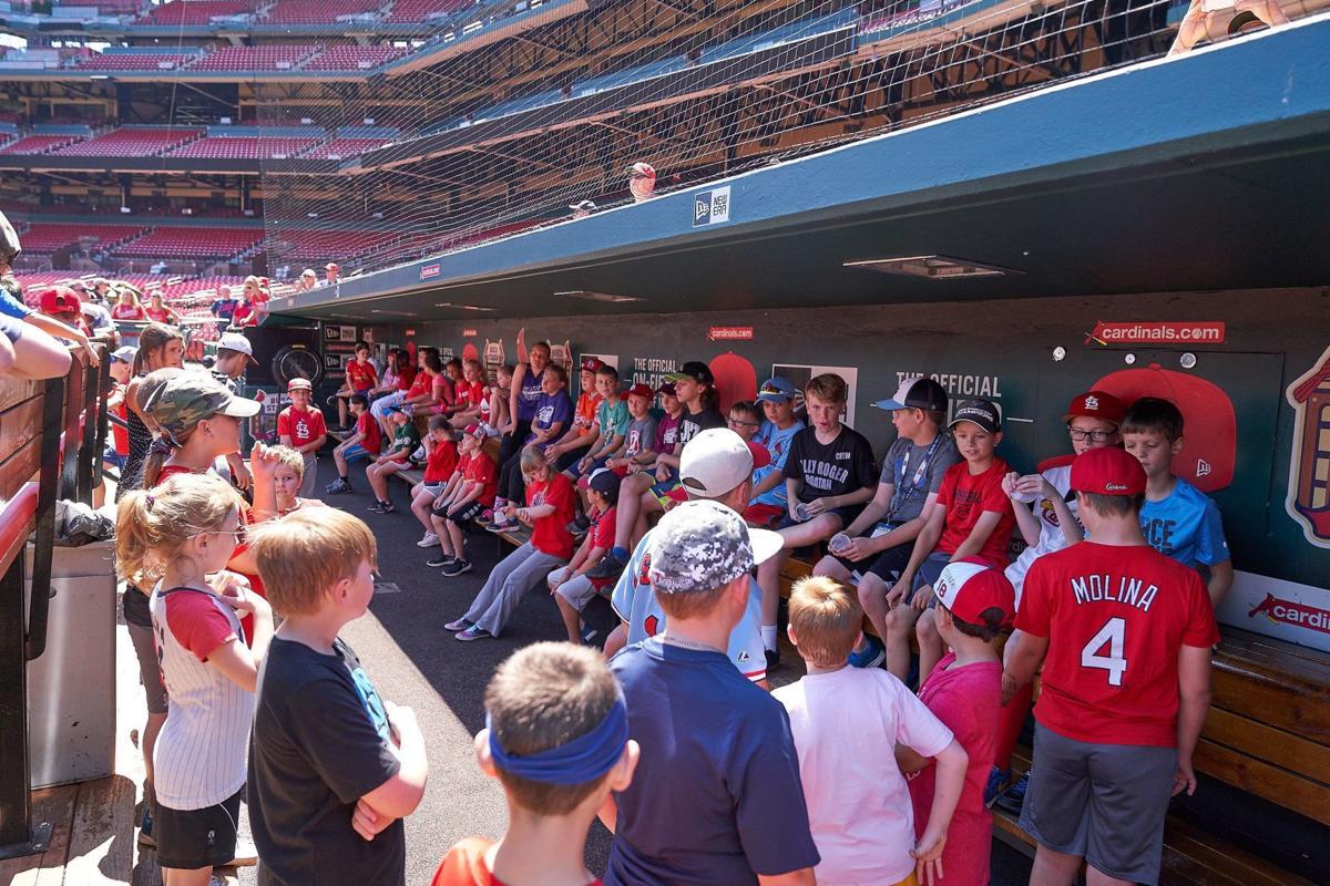 Cardinals Kids dugout