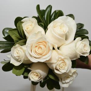 008_Walter Knoll Florist