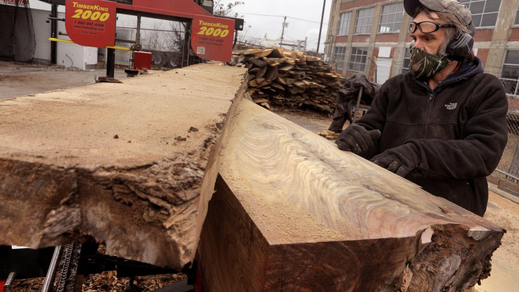 Going against the grain, company finds opportunity in logging 'St. Louis forest'