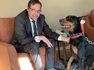 Messenger: Stanley der Dobermann ist wieder vereint mit seiner Familie nach einer kurzen Urlaubsreise