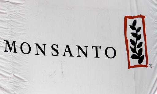 How would Bayer-Monsanto affect workers, farmers, investors?