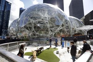 Alternate sites to be included in region's Amazon proposal
