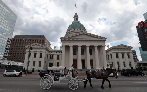 Carriage Rides in the city