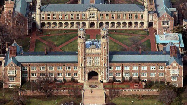 Washington University scientist resigns after falsifying data in