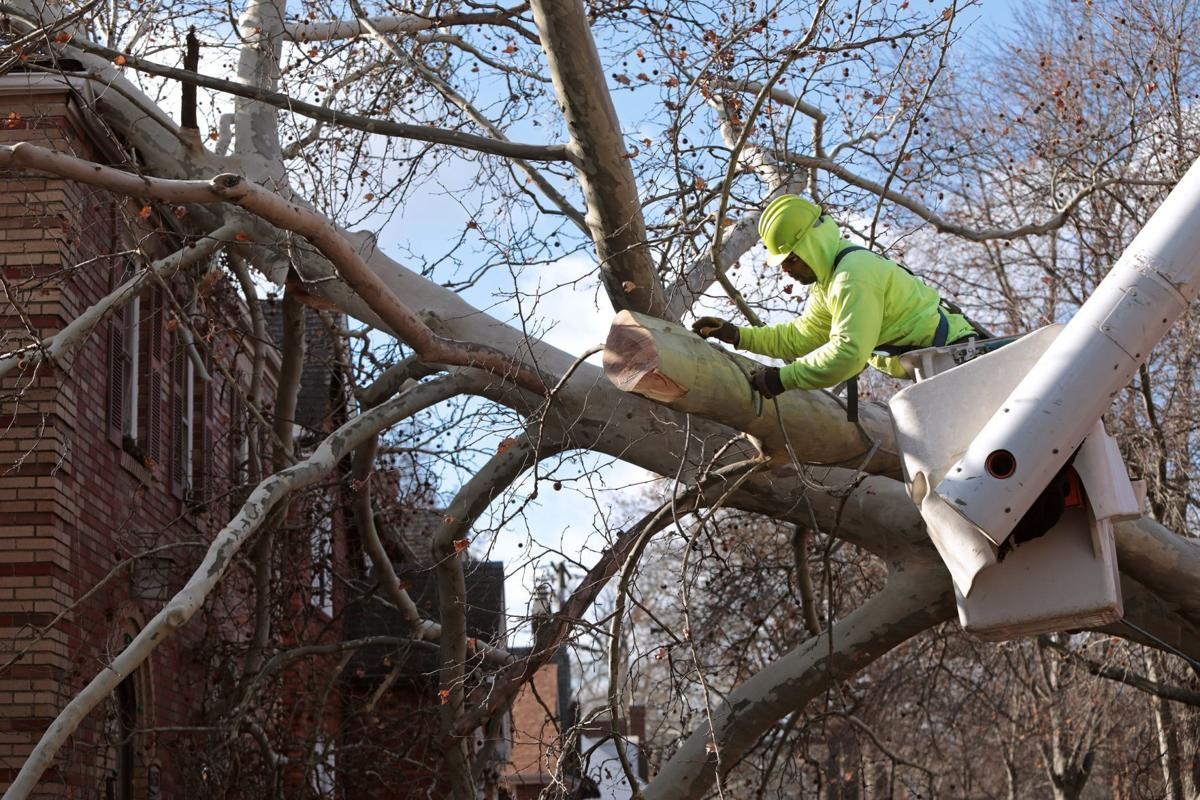 Heavy winds down trees, cause power outages across St. Louis region