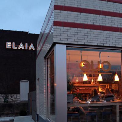 Elaia & Olio update