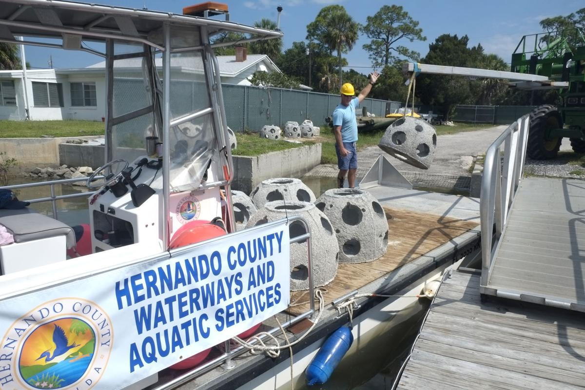 Ghost Ship becomes new home for Hernando fish