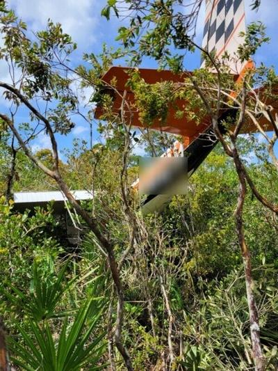 Pilot, passenger OK after small plane crashes in wildlife area