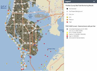 Pinellas: Reporting tool for Red Tide cleanup requests