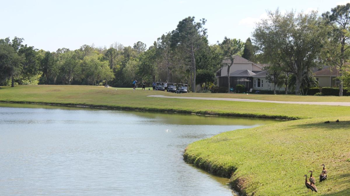 PIPA0401 Golf Courses1.JPG