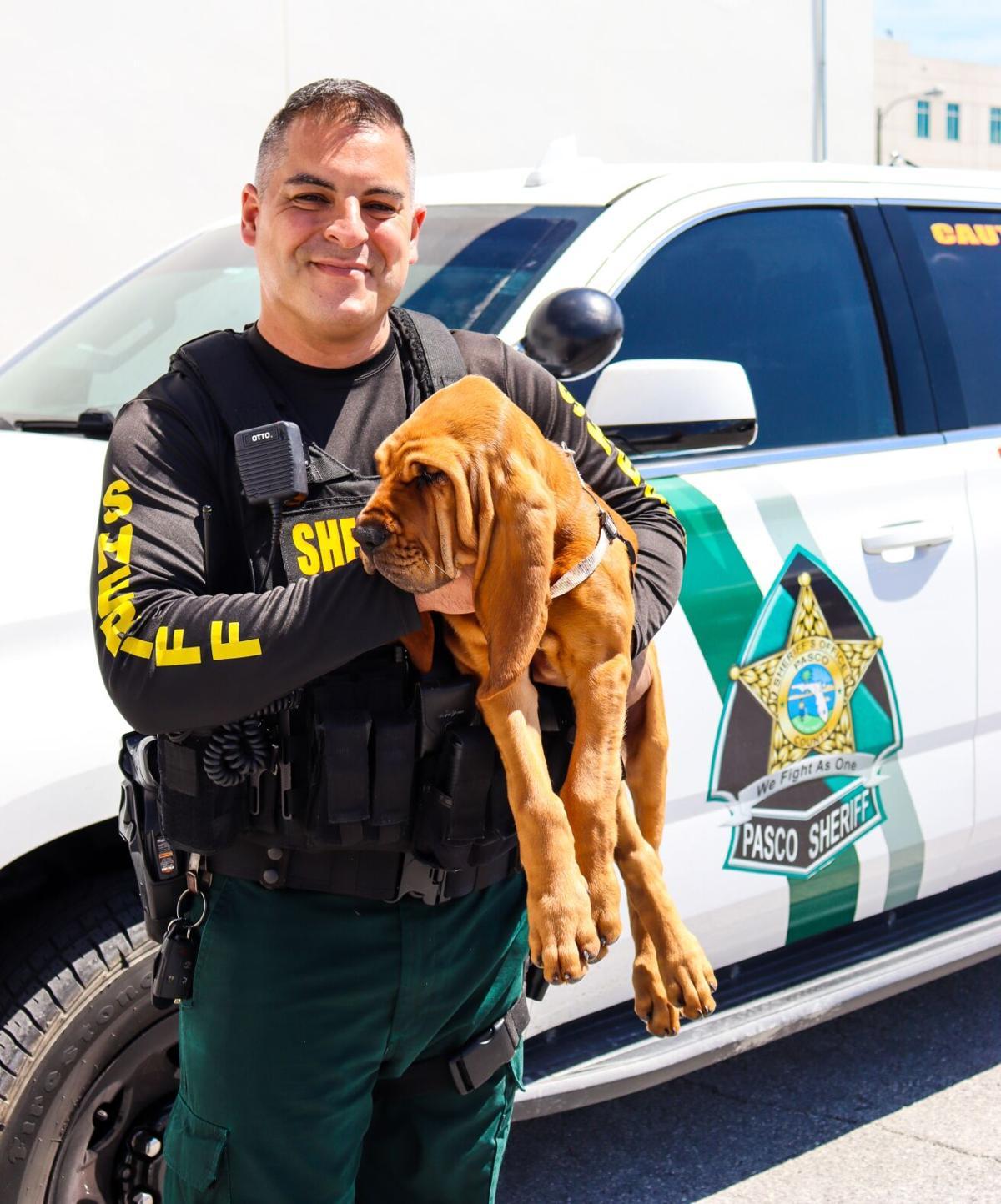 PA0505 BloodhoundGang HERNANDEZ-SHELBY.jpg