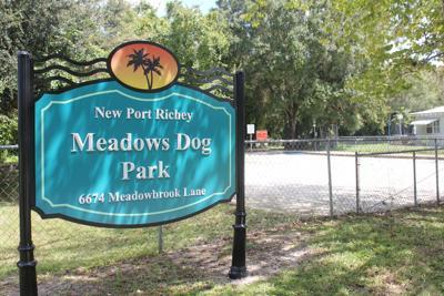 Meadows Dog Park to receive major upgrades