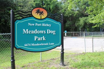 NPR council likes vision for improved Meadows Dog Park
