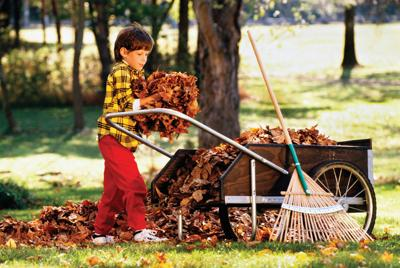 Creative ways to recycle leaves